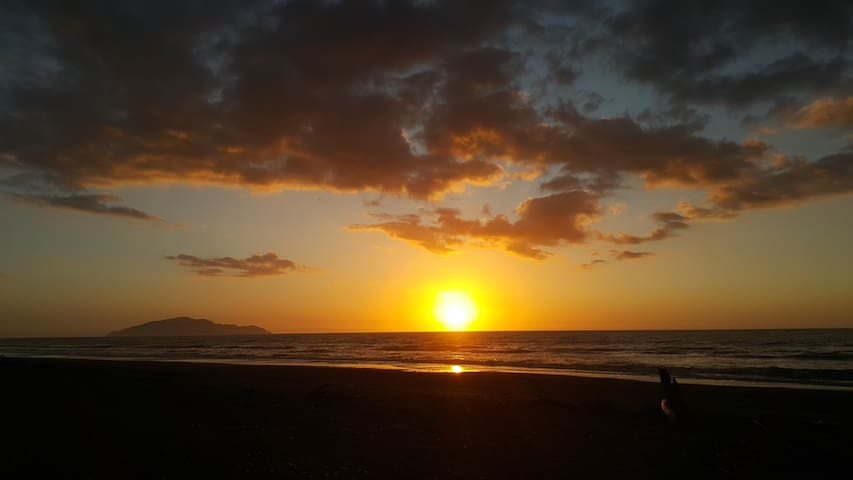 Beautiful Otaki Beach Peaceful Stay - Otaki Beach - Talo