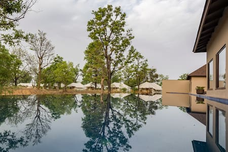 Call of the Wild - Glamping in Kanha ( +Meals)