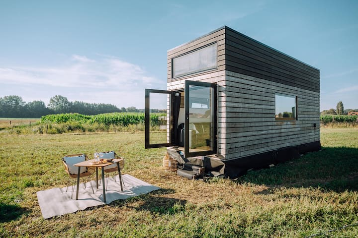 One-of-a-kind tiny house in middle of polders