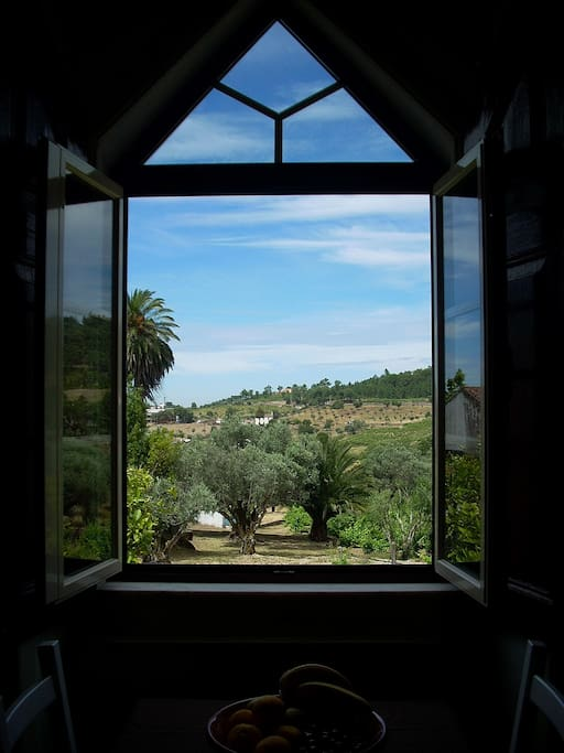 The apartment has beautiful views over the vineyard and across the valley