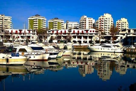 Apartment in Porto Verde - Misano Adriatico - Apartment