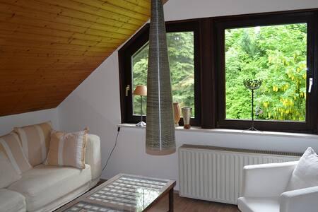 Apartment-Düsseldorf/Köln-fair - Wohnung