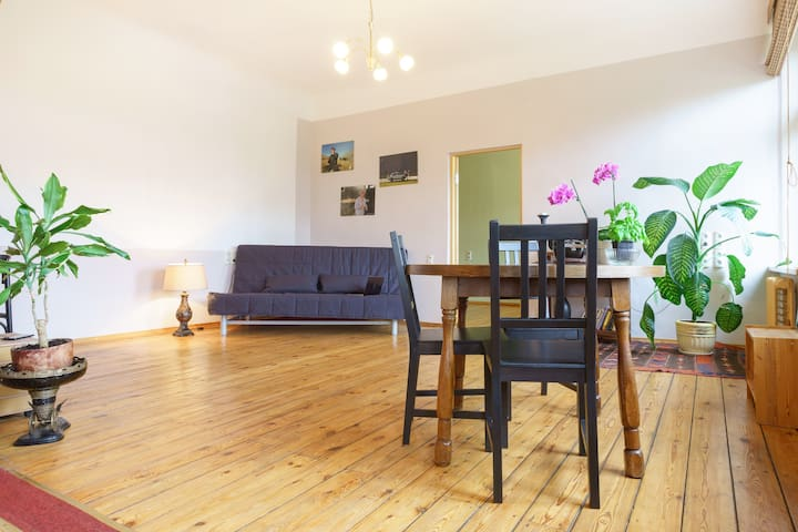 Spacious, central 1-bedroom flat  - Riga - Appartement