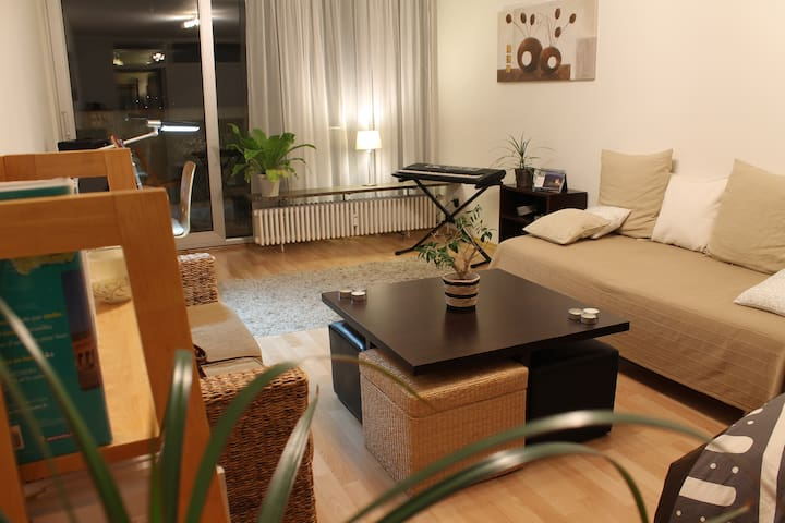 Lovely apartment with large balcony - Munich - Apartment
