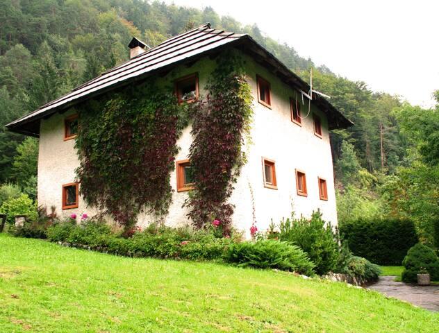 Rent a charming house Bukovje - Srednji Vrh, Kranjska Gora - Dům