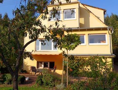 Panoramablick über das Nahetal - Sobernheim - Wohnung