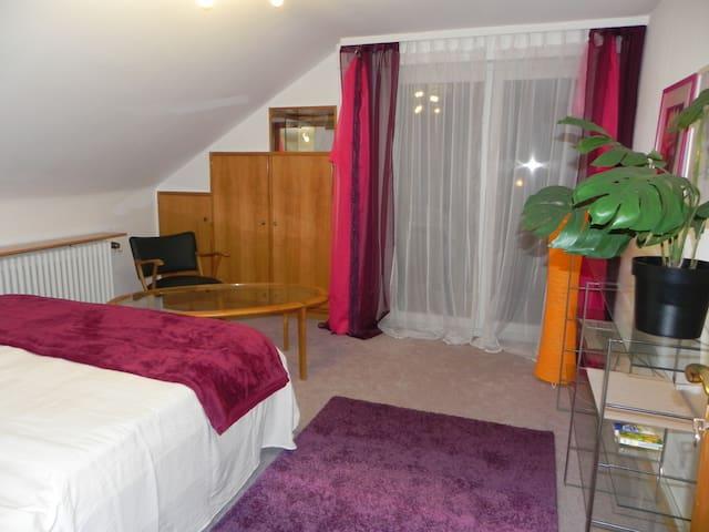 Quiet room Stuttgart-Killesberg - Stuttgart - Bed & Breakfast