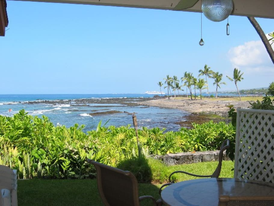 This is the view from your lanai!  Spectacular views of the Pacific including turtles, dolphins, fish and, seasonally, whales!