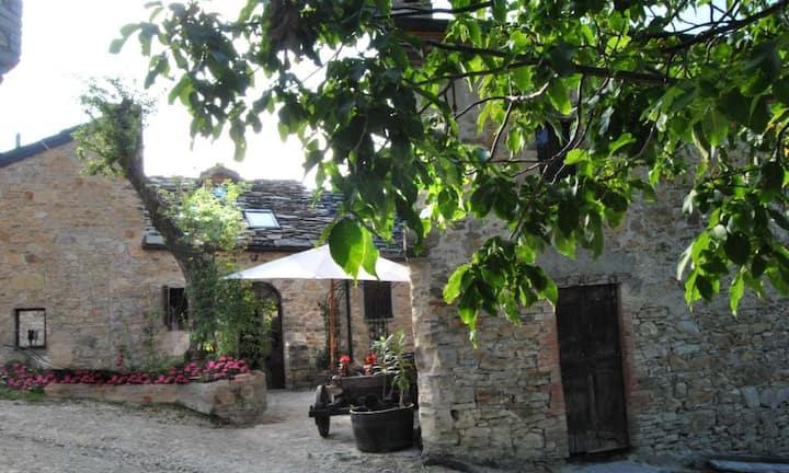 Wild Elves hamlet - Borgo degli elfi selvatici