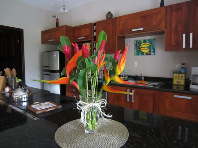 Beautiful & Secluded -FOREST/BEACH - Puerto Quepos - Villa