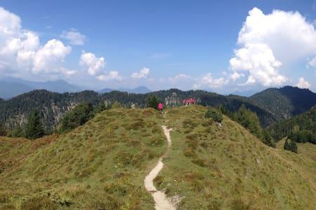 Oberachenhof - Rm1 - Budget ski - Ellmau