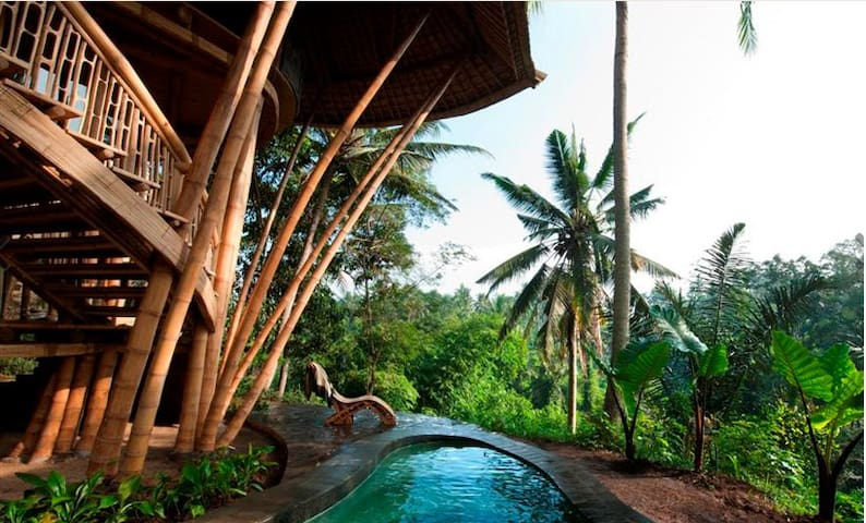 Incredible All Bamboo Home on River Valley, Pool