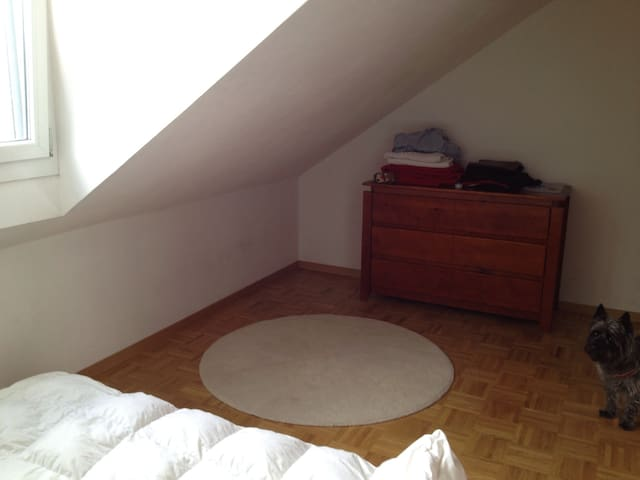 Nice double room close to Geneva - แบลวู