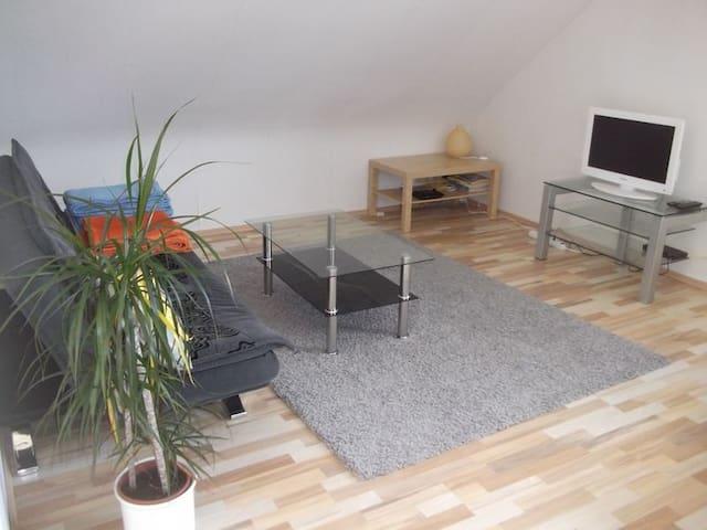 Hell und schön - Saarbrücken - Apartment
