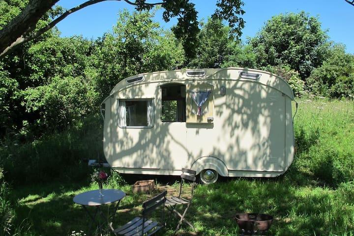 Elsie, Mad Dogs & Vintage Vans - Bridstow - Camper/RV
