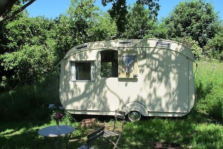 Elsie, Mad Dogs & Vintage Vans - Bridstow - Camper/Roulotte