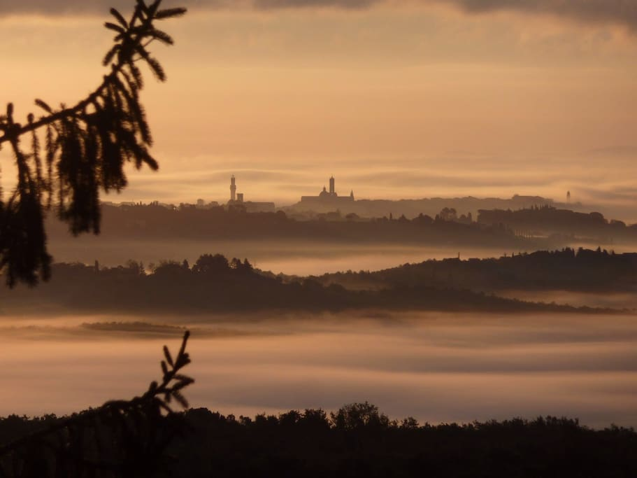 Siena at dawn ( photo taken by guest to the window in bedroom)
