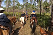 Out for a trail ride with friends