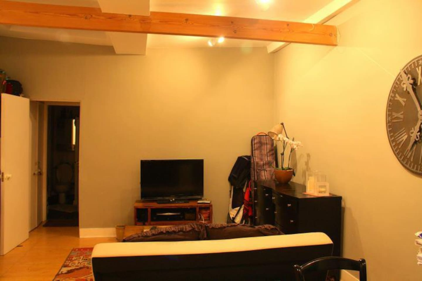 Sofa bed for guests, large flat screen TV