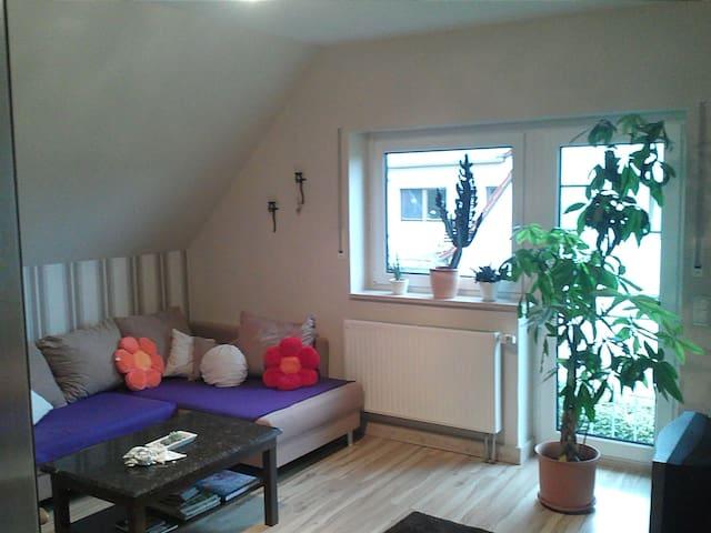 Gemütliches Zimmer bei Leinefelde - Hausen - House