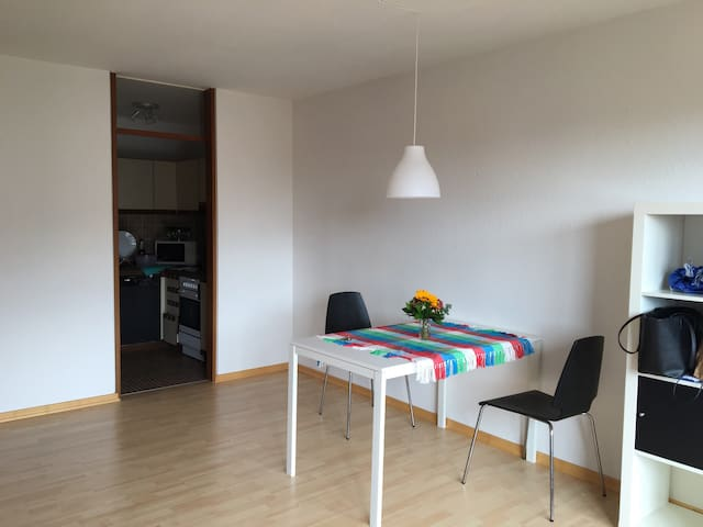 Cozy apartment with balcony. Great view. - Tübingen - Daire