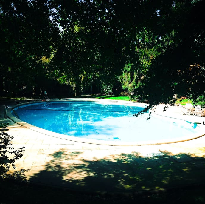 This is the pool of the condo in a huge garden, where you feel like being on a summer vacation..but instead you are in the most luxurious area of Milan