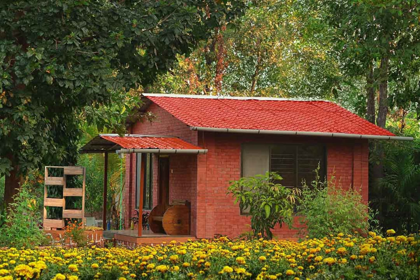 Single wooden Cottage with One queen Bed and 4single bed capacity
