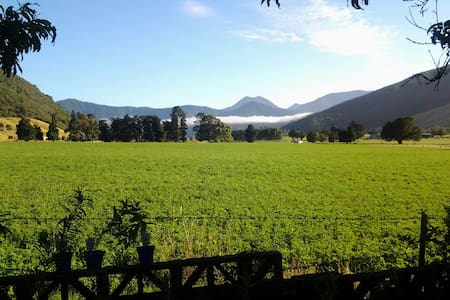 A Gem in the Making, Havelock, Marlborough Sounds - Havelock - Talo