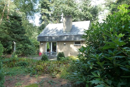 Bungalow in the forest - Lochem - Bungalo