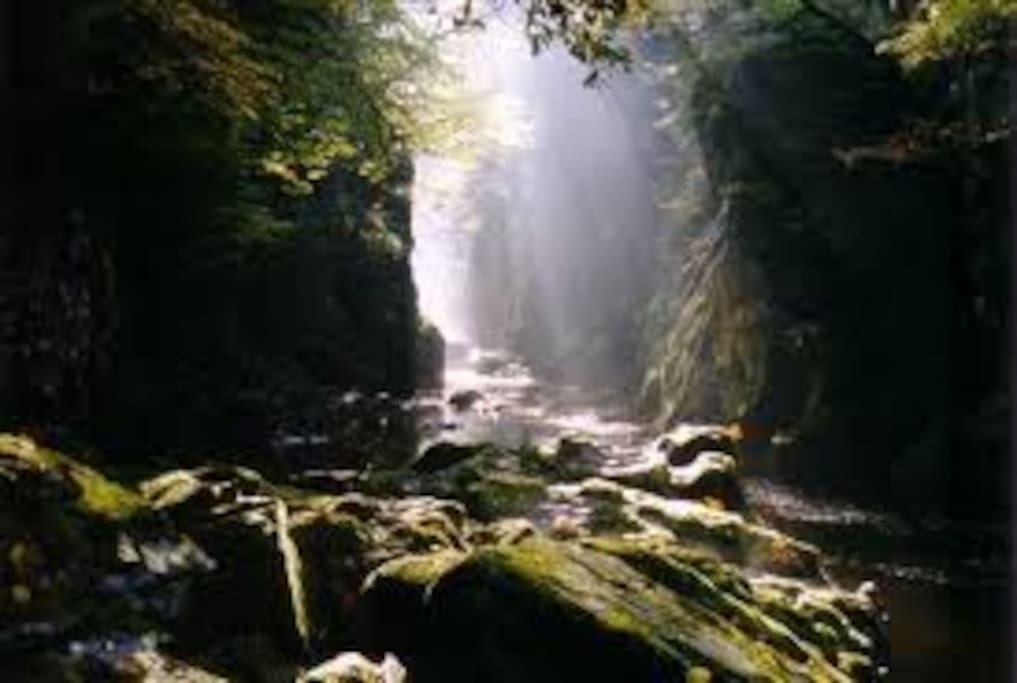 The Fairy Glen Gorge. A Magical place