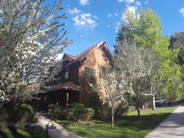 Five Star Luxury Central Aspen Home King / Queen
