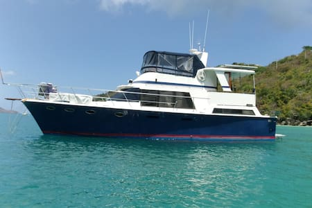 Grenadines Captain only X 4 guests  - Port Elizabeth Bequia