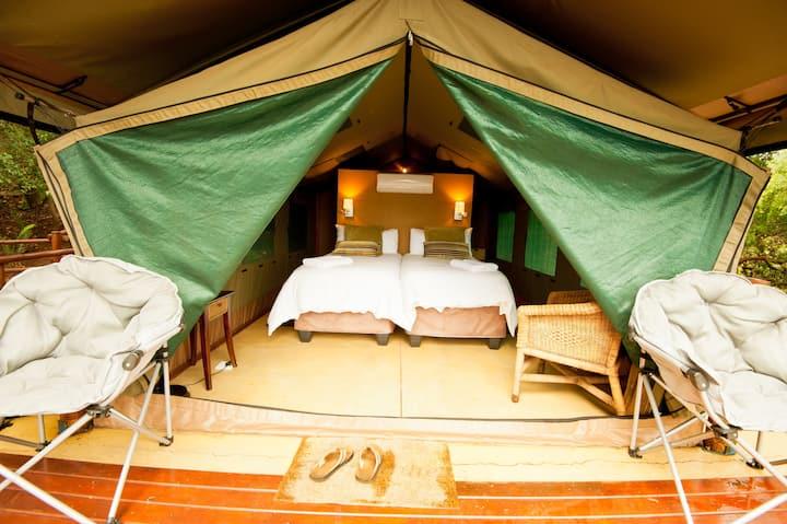 Ituri 1 Luxury Tent