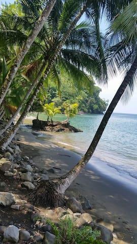 Secluded Eco Lodge Beachfront - Golfito - Aamiaismajoitus