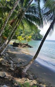 Secluded Eco Lodge Beachfront - Golfito