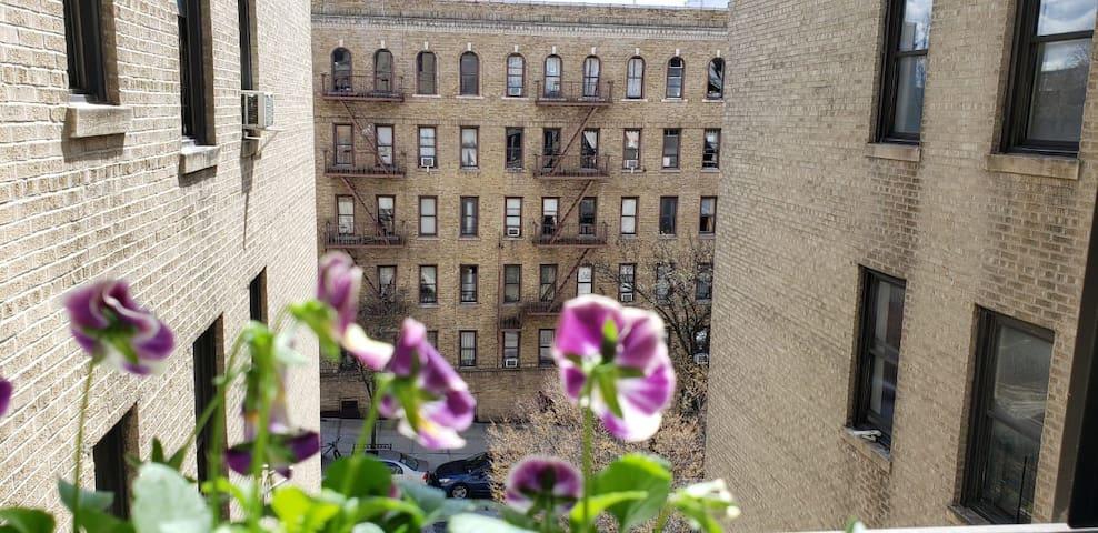 Cozy 1 br Apt In Uptown Manhattan