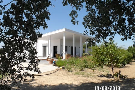 Great, wide, comfortable house for restful stay - Mesagne - Villa