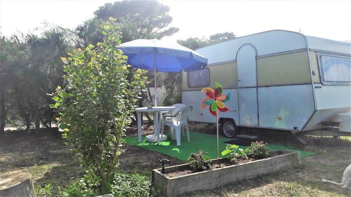 Sintra Vintage caravan in farm 2 to 4 guests