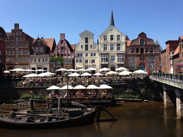 Schönes, helles Zimmer im Lüneburger Wasserviertel