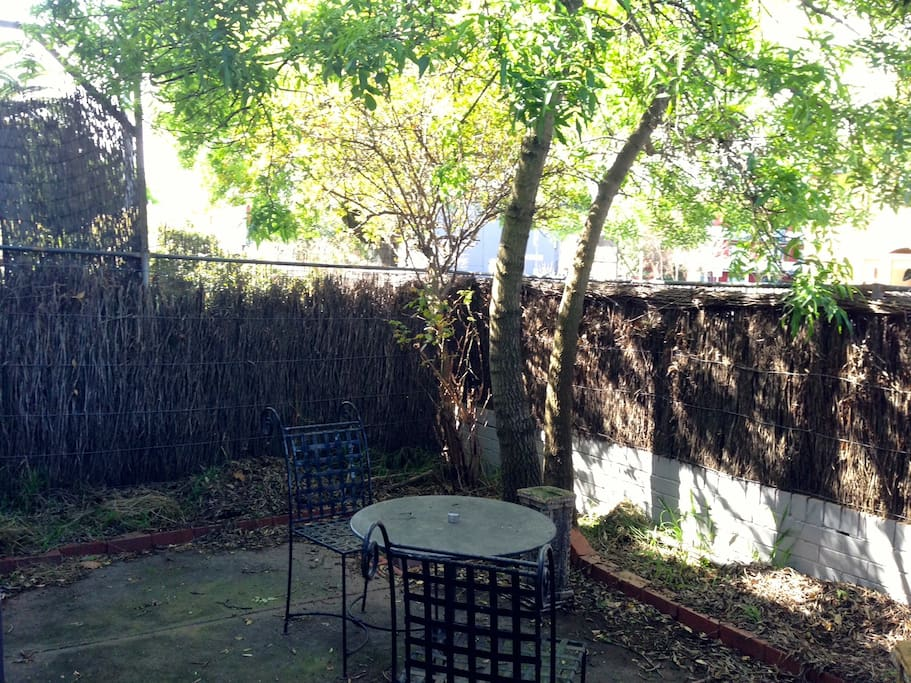 Sunny private courtyard for you and your pets