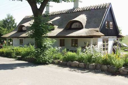 Nice thatched house, trampo, beach  - Roskilde