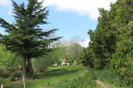 Gîte dans le Parc naturel du Pilat - Roisey - Casa