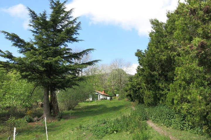 Gîte des 2 ânes, Parc naturel du Pilat