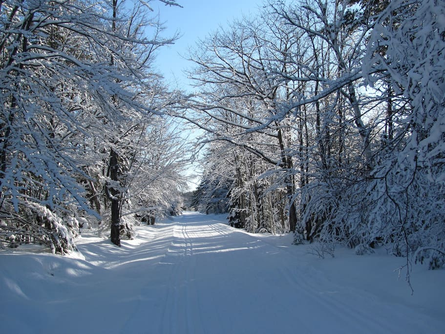 Miles of groomed  carriage road for cross-country skiing.