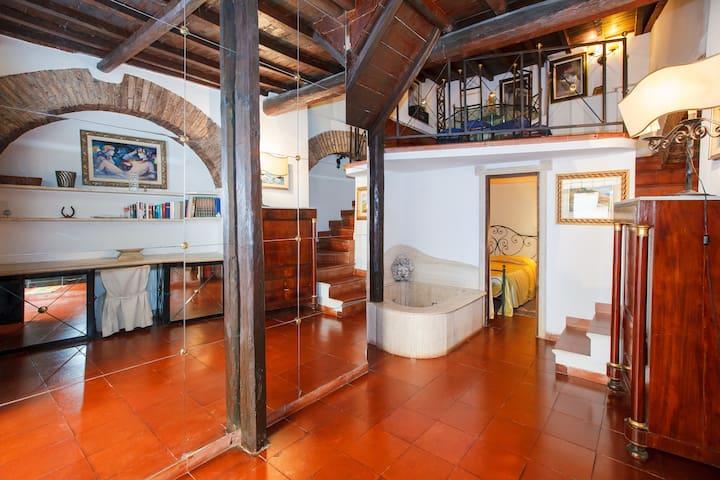 Trastevere Cedro roof garden luxury - Rome - Leilighet