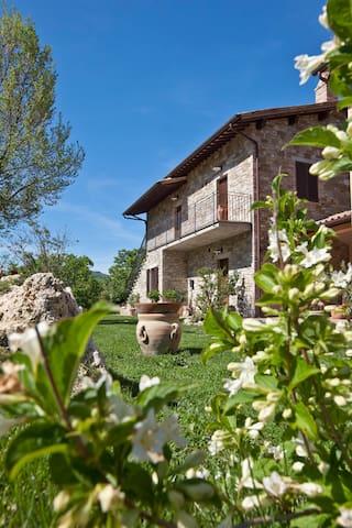 Relais Parco  Subasio 2/4- S Person - Assisi - Appartement
