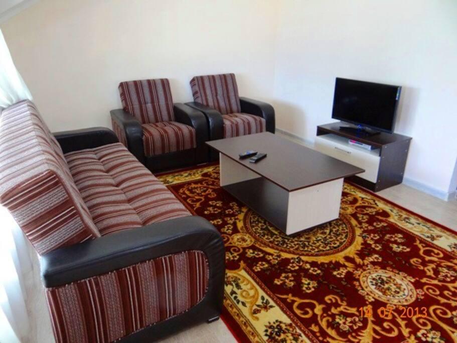 Зал с раскладным диваном, спутниковое телевидение 165 каналов (Континент)