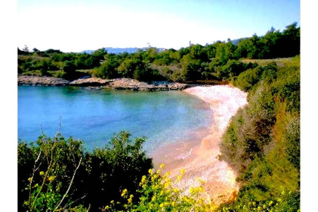 One of the Beaches in walking distance