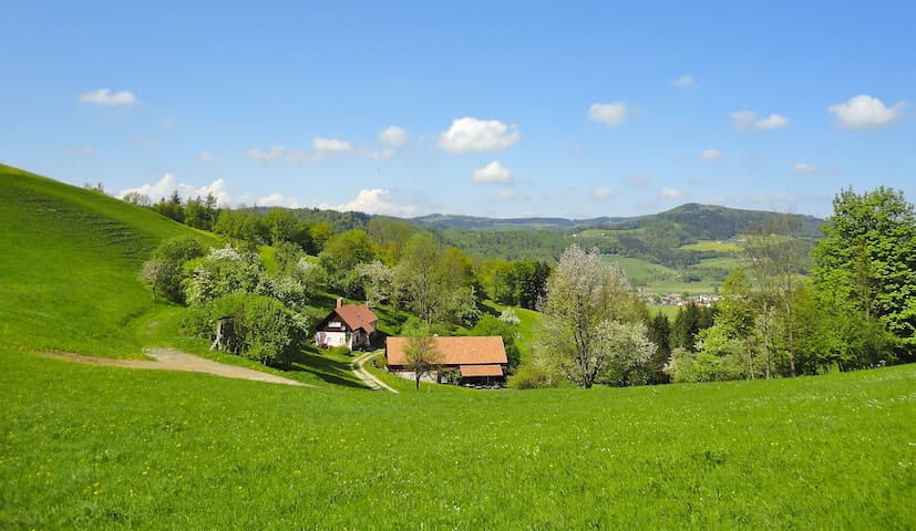 Natur pur - Juwel bei Wien - Rainfeld - Haus