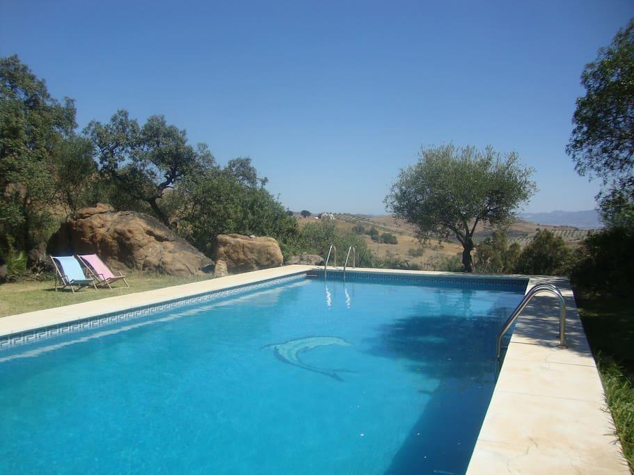 Eigener Pool ca. 15m x 5m im Garten, Blick ins Tal